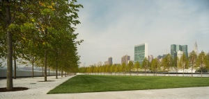 Park und Baumallee. Quelle: Franklin D. Roosevelt Four Freedoms Park, © Paul Warchol
